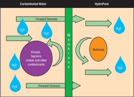 Figure 1 Forward Osmosis Allows Clean Water To Pass Through The Membrane While Viruses Bacteria And Other Contaminants Are Left Out