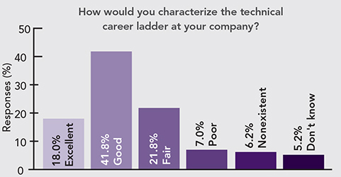 How would you characterize the technical career ladder at your company?