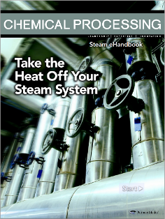 Steam eHandbook: Take the Heat Off Your Steam System Thumbnail