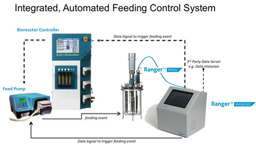 Automated Feeding Control -- Figure 1. Probe provides real-time data that analyzer uses to generate a control parameter for nutrient addition.