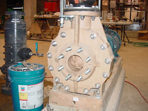 CENTRIFUGAL PUMP -- Figure 1. Many plants contain a large number of such pumps.