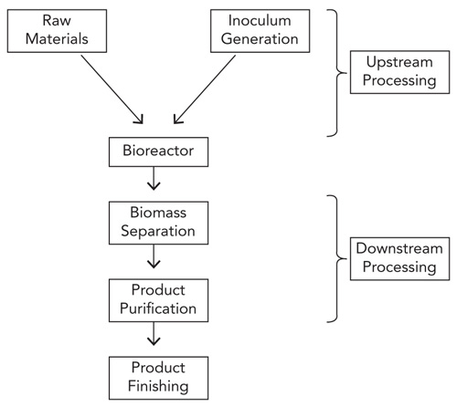 TYPICAL STEPS -- Figure 1. A bioprocessing flowscheme generally involves a number of unit operations that differ from those in conventional chemical manufacture.