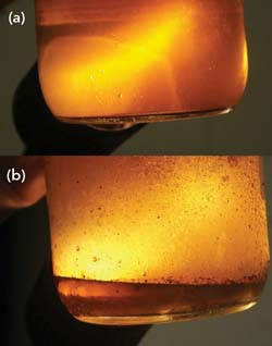 THERMAL FLUID SAMPLES -- Figure 1. Fluid from the main loop (a) is fine but fluid from thermal buffer tank (b) has layer of water.
