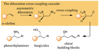 DUAL-CATALYST SYSTEM -- Figure 1. An in-sequence diboration cross-coupling reaction converts alpha-olefins into new organic compounds. Source: James P. Morken.
