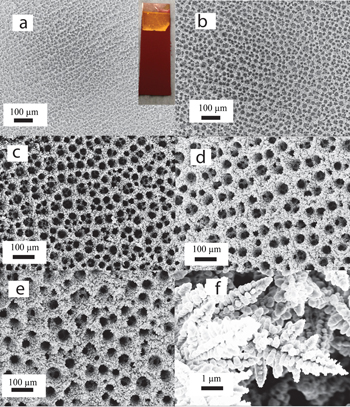 CATALYST SURFACE -- A foam of copper offers sponge-like pores and channels, providing more active sites for CO2 reactions than a simple surface. Source: Palmore lab/Brown University