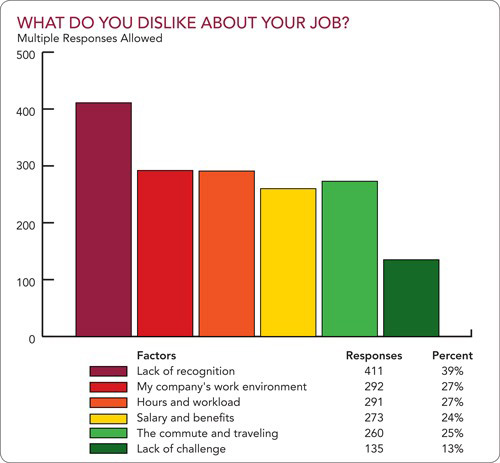 Figure 6. What do you dislike about your job?